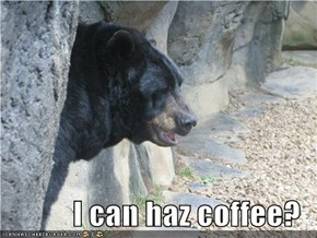 I can haz coffee?
