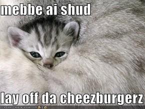 mebbe ai shud  lay off da cheezburgerz