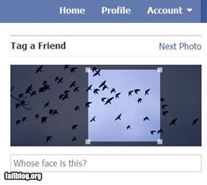 Face detection FAIL