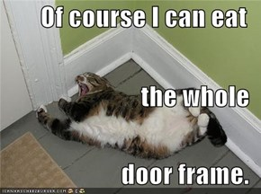 Of course I can eat the whole door frame.