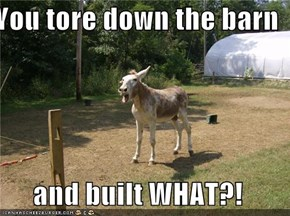 You tore down the barn  and built WHAT?!