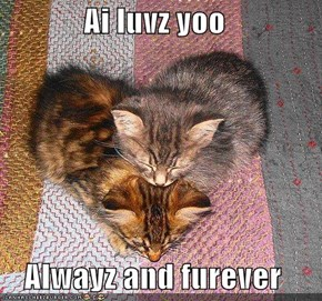Ai luvz yoo  Alwayz and furever