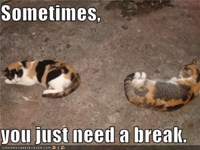 Sometimes,  you just need a break.