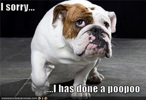 I sorry...  ...I has done a poopoo