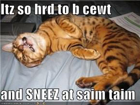 Itz so hrd to b cewt   and SNEEZ at saim taim