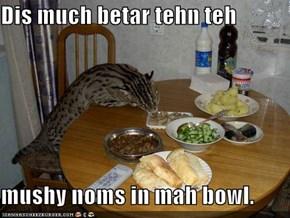 Dis much betar tehn teh   mushy noms in mah bowl.