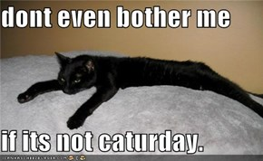 dont even bother me  if its not caturday.