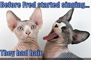 Before Fred started singing...  They had hair.