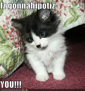 Iz gonnahipotiz  YOU!!!
