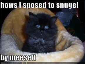 hows i sposed to snugel   by meeself