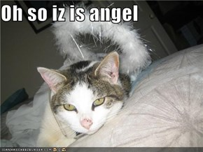 Oh so iz is angel