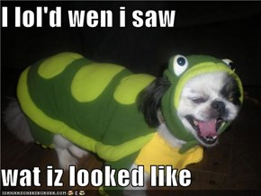 I lol'd wen i saw  wat iz looked like