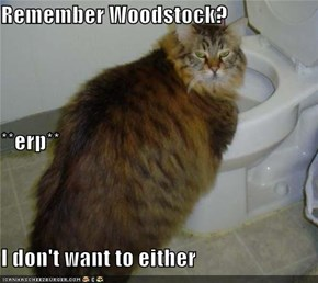 Remember Woodstock? **erp** I don't want to either