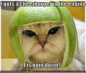 I gots a cheezburger in the engine  I is goin down!