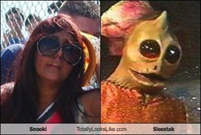 Snooki Totally Looks Like Sleestak