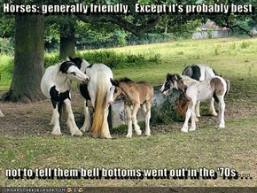 Horses: generally friendly.  Except it's probably best    not to tell them bell bottoms went out in the '70s . . .