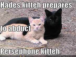Hades kitteh prepares to abduct Persephone kitteh
