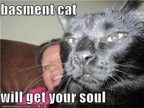 basment cat  will get your soul