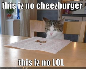 this iz no cheezburger  this iz no LOL