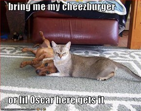bring me my cheezburger      or lil Oscar here gets it