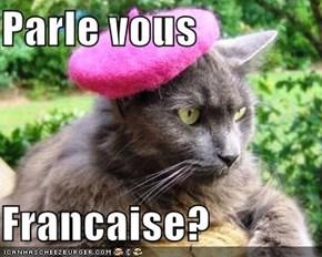 Parle vous  Francaise?