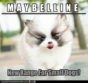 Maybelline for Dogs