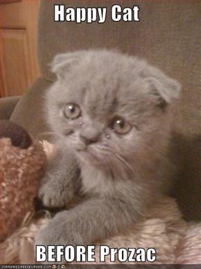 Happy Cat  BEFORE Prozac