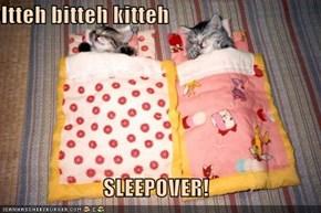 Itteh bitteh kitteh  SLEEPOVER!