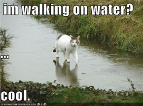 im walking on water? ... cool.