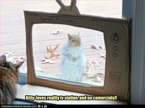 Kitty  loves reality tv station, and no comercials!!