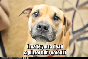 I made you a dead squirrel