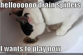 helloooooo drain spiders  I wants to play now