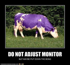 DO NOT ADJUST MONITOR