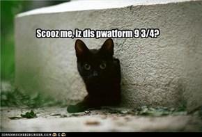 Scooz me, iz dis pwatform 9 3/4?