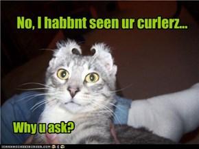 No, I habbnt seen ur curlerz...