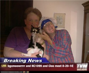 Breaking News - bgcmeowrrrr and NC1099 and Cleo meet 8-20-10
