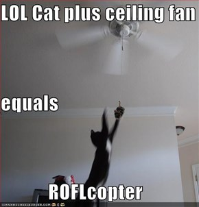 LOL Cat plus ceiling fan equals ROFLcopter