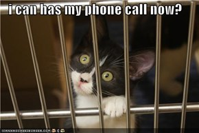 i can has my phone call now?