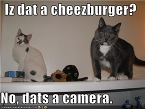 Iz dat a cheezburger?  No, dats a camera.
