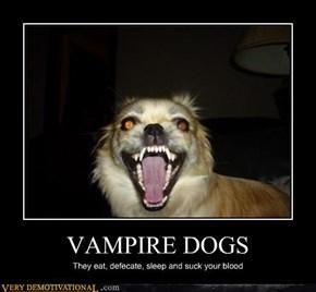 VAMPIRE DOGS