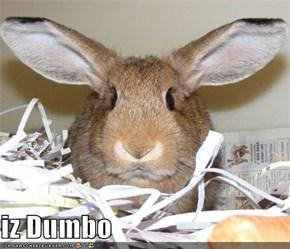 iz Dumbo