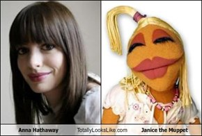 Anna Hathaway Totally Looks Like Janice the Muppet