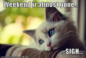 Weekend iz almost gone...  ...SIGH...