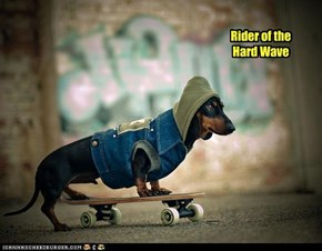 Rider of the Hard Wave