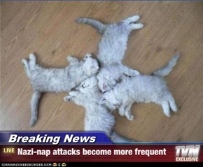 Breaking News - Nazi-nap attacks become more frequent