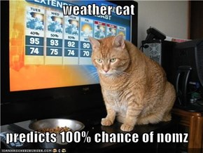 weather cat  predicts 100% chance of nomz