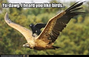 Yo, dawg. I heard you like birds...
