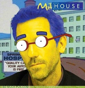 House is not a Meme