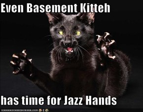 Even Basement Kitteh   has time for Jazz Hands