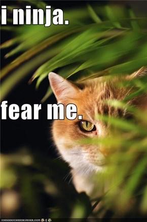 i ninja.  fear me.
